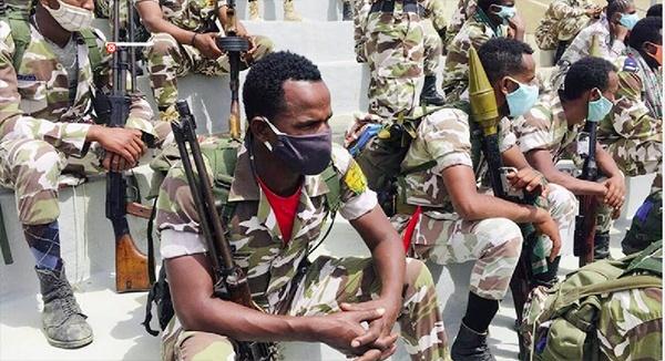 island.lk: Ethiopia: War in Tigray