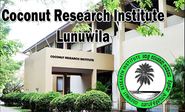 Proposed Plantation University and its economic benefits